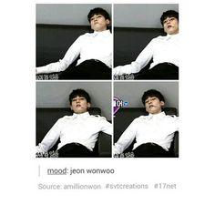 i relate to jeon wonwoo in a deeper level