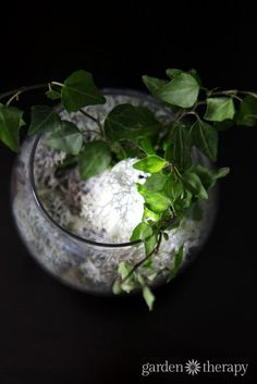 Glowing terrarium tutorial - how to make an indoor plant terrarium night light.