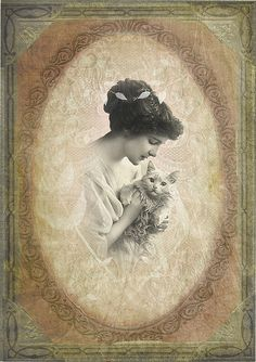 Kitty and lace | Flickr - Photo Sharing!