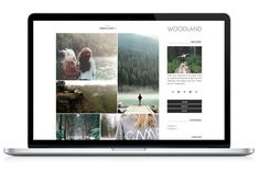 Woodland Wordpress Theme by Light Morango on Creative Market