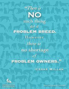 Cesar Millan #noproblembreeds