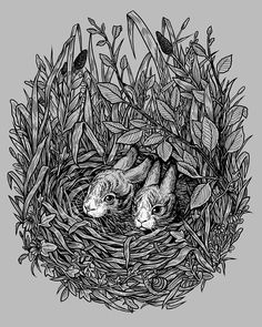 Two baby hares cuddled in a nest among the grass and meadow flora. Illustration by W.Kolinska. Available on clothing, mugs, stickers and art prints at design by humans.