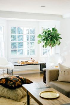 Boho inspired living room with modern metal chairs, sheepskin throws, and an indoor plant