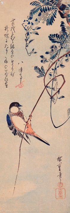 Ando Hiroshige (1797-1858) Ilustración para un poema de Hajjintei, el amigo de Hiroshige. El poema describe las glicinas flores pálidas que florecen cerca de la entrada a una cueva.