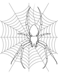 Printable Halloween Decoration Cutouts | Spider coloring ...