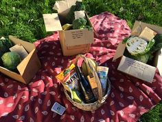 Question: What's full of organic fruit and Vegetables and sits in a field?  Answer: A WEE box family on a picnic :)  Get your orders in for Thursday delivery