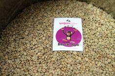 Quijote-Kaffee ist ein Kollektiv, dass den Bauern hohe Garantiepreise zahlt - auch im voraus
