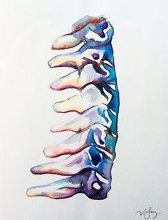 Precioso arte anatómico en acuarela de Vivian Jay