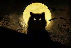 black cat artwork - Yahoo Image Search Results