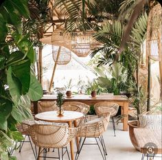 This botanical decor is perfect for any bohemian home! The natural wicker dining chairs and overheads are so beautiful. I love the jungalow vibe of this setting! Coffee Shop Design, Cafe Design, House Design, Cool Cafe, Bali Restaurant, Bali Decor, Estilo Tropical, Wicker Dining Chairs, Botanical Decor