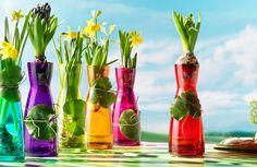 Home - Bormioli Rocco Glass Vase, Tableware, Flowers, Inspiration, Home Decor, Terrazzo, Colorful, Shop, Products