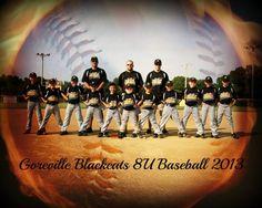 Baseball team photo I've taken
