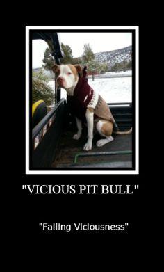 #ViciousFail #PitBull