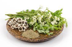 Moringa: uso, propiedades y beneficios para la salud | Inspirulina
