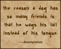 Funny quotes about dogs