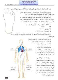 كتاب العلاج الشامل للجسم عبر تدليك اليدين والقدمين رفلكسولوجي | تعلم بالمشاهدة موقع فن العيش بسلام فيه التعليم بالمجان