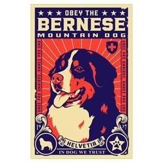 Obey the Bernese Mountain Dog! Poster