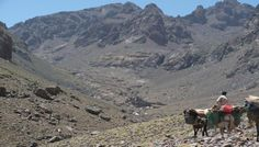 Ascent of Jebel Toubkal | Original Travel