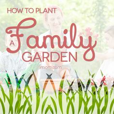 How to Plant a Family Garden   iMOM