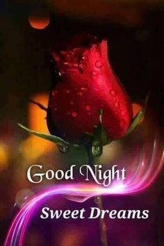 Buy Made In India Products via WhatsApp - COD and Easy return available Good Night Love Messages, Good Night Thoughts, Beautiful Good Night Images, Good Night Prayer, Romantic Good Night, Good Night Greetings, Good Night Blessings, Good Night Gif, Good Night Wishes