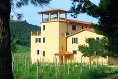L'azienda vinicola