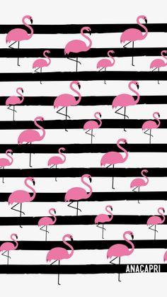 50 Ideas for wall paper fofos flamingo Flamingo Wallpaper, Flamingo Art, Summer Wallpaper, Emoji Wallpaper, Cute Wallpaper Backgrounds, Trendy Wallpaper, Pretty Wallpapers, Pink Wallpaper, Cellphone Wallpaper