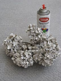 info for dyeing or spray painting hydrangeas