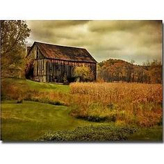 """Trademark Art 'Old Barn on Rainy Day' by Lois Bryan Photographic Print on Canvas Size: 22"""" H x 32"""" W x 2"""" D"""