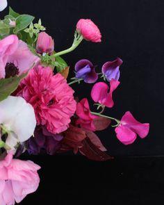 He estado viendo fotos de mis flores del cultivo de primavera y no puedo evitar sentir un poco de nostalgia pero sobre todo ilusión! ganas de ver la cosecha que viene de ver el fruto de las nuevas semillas que voy a probar de las nuevas variedades... ese pensamiento me ayuda a sobrellevar éstos días grises y lluviosos. Todo tiene su ciclo y su sentido. . . . . . . . . . . . . . . . . . . . . . . . . .  #farmerflorist #floralarragement #flowerstyles_gf #flowerstagram #picoftheday #petals…