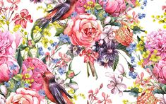 Painting watercolor flowers birds.