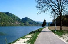 Der Donau-Radweg in der Schlögener Schlinge