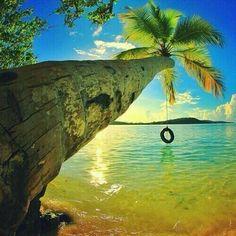 Caribbean living