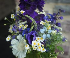delphinium, veronica, cornflowers, feverfew, love-in-a-mist, anemone, and scabiosa caucasica