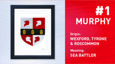 Murphy is the Most Popular Irish Surname. Order your Coat of Arms at www.paintedclans.com. Hand Painted Modern Irish heraldry. Wedding or Anniversary Gift.