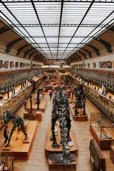 """There are around museums in Paris, France within city limits. This list also includes suburban museums within the """"Grand Paris"""" area Tour Eiffel, Paris Travel, France Travel, Dinosaur Museum, Fontainebleau, Paris Pictures, Most Beautiful Cities, Manchester, Travel Inspiration"""