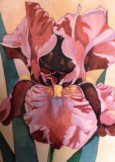 Iris www.markballard.com