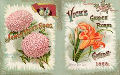 Vick's Garden and Floral Guide 1898