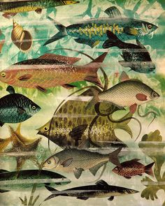 Fish, Leonard Weisgard