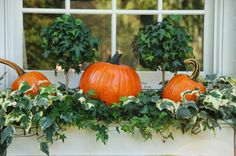 place pumpkins with greenery into window boxes for a cool fall feel