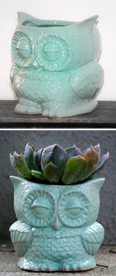 Love this Mint Owl Planter.  So cool, vintage, and Owely!  3 of my favorite things:D