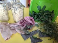 Teñido solar con cochinilla y plantas silvestres de Lanzarote. Primeraparte