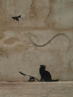 street art by Banksy .  Cat and bird.  000