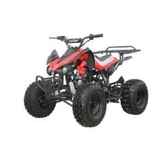 #2: 125cc Sports ATV 8 Tires with Reverse.