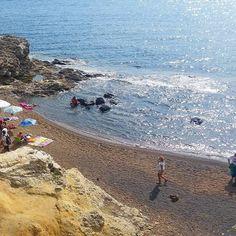 http://ift.tt/1NHxzN3 In ritardo vi mostriamo in nostro #blackfriday... venerdi alla spiaggia di  #terranera  a #portoazzurro. Continuate a taggare le vostre foto con #isoladelbaapp il tag delle vostre vacanze all'#isoladelba.
