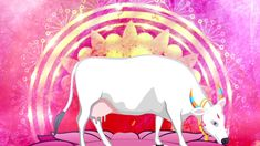 Gho Suktam - Vedic Mantra & Bajans To Fulfill All Desires Vedic Mantras, Devotional Songs, Life Problems, Cow, Aurora Sleeping Beauty, Make It Yourself, Cattle