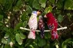 3 fabric birds on a swing from Earthbound Trading Company