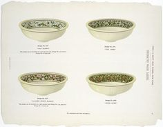 Mott Iron Works 1884 bath catalog. Decorated wash basins. Pear blossom, Wild aster, Japanese quince blossom and Bitter sweet.
