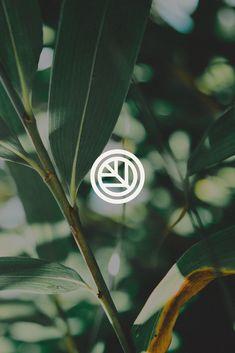 Leaf icon for an organic juice bar brand Surf Logo, Logos, Decor Logo, Organic Logo, Typography Layout, Geometric Logo, Boutique Design, Cool Logo, Logo Design Inspiration
