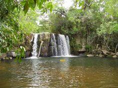 la Reserva de mbaracayu