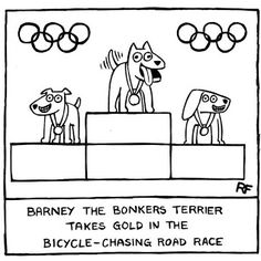 Dog Olympics 2012…